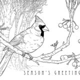 Holiday-Cardinal-Coloring-Page-web