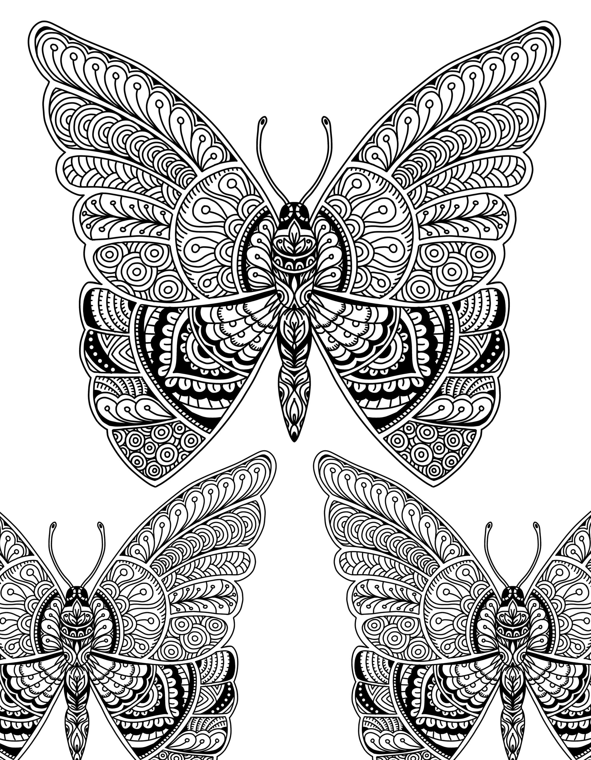 Beautiful Butterfly Doodle Art Adult Coloring Page