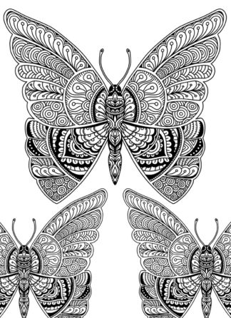 Beautiful Butterflies Doodle Art Adult Coloring Page for Instant Download