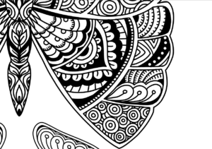 Beautiful Butterflies Coloring Page Detail 1