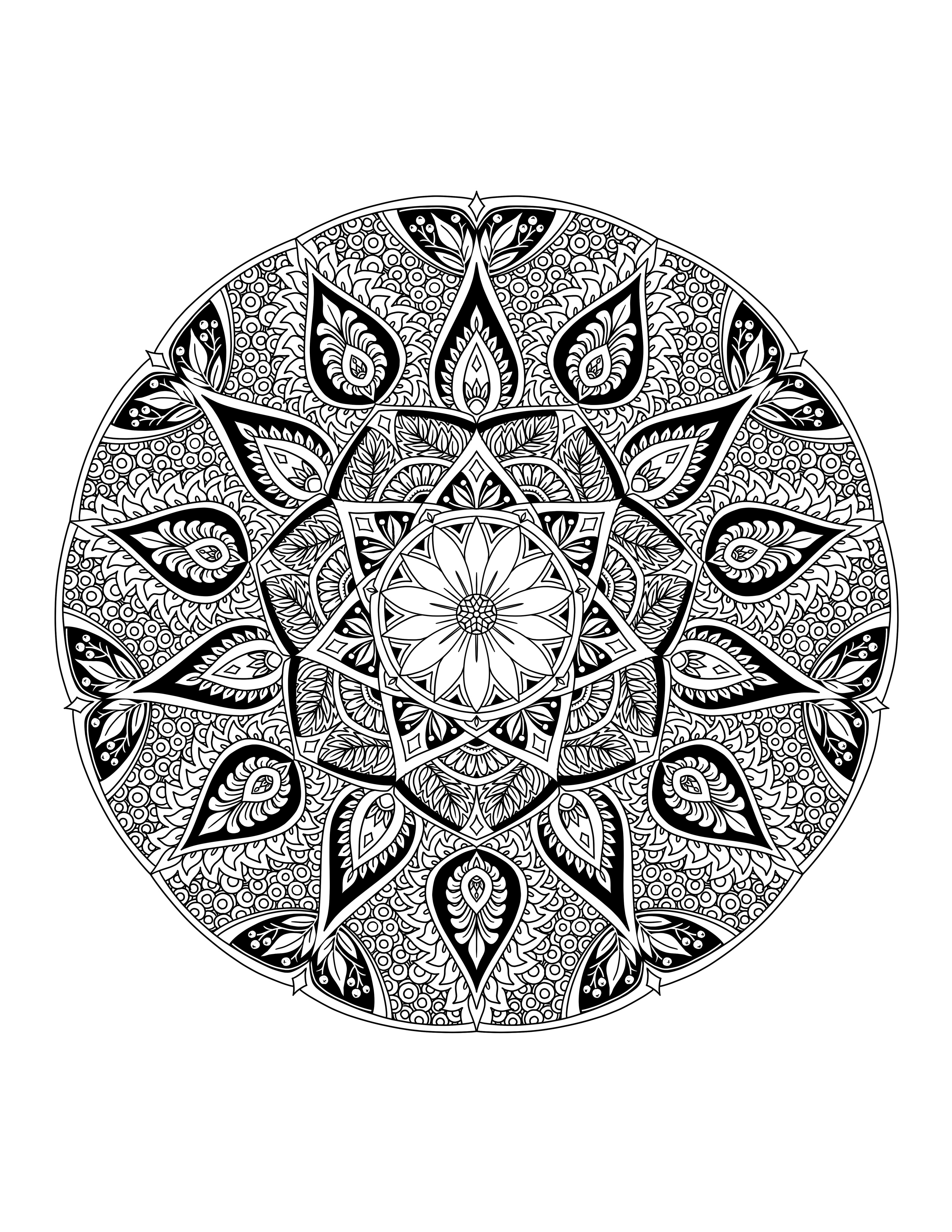 How To Draw A Mandala In Clip Studio Paint Karyn Lewis